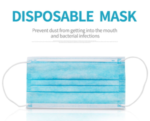 Disposable 3 Ply Protective Mask